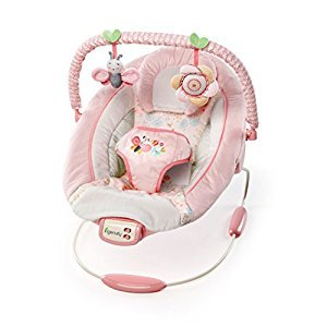 Ingenuity Bright Starts Cradling Bouncer-Felicity Floral, Pink/Cream/Yellow