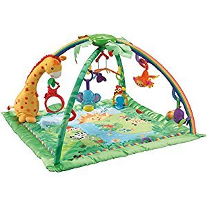 Fisher-Price Rainforest Soft Gym