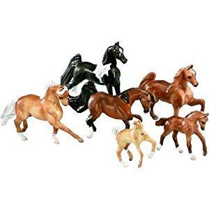 Pony Gals Show Horses