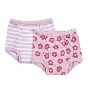 i play. Reusable Absorbent Training Underwear (2 pack) Pink Blossom, 18 months
