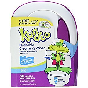 Kandoo Flushable Sensitive Toddler Wipes Tub 50ct (2 Pack)