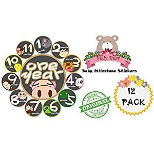 Belly Bear Milestones and Holidays Baby Monthly Stickers Shower Gift or Scrapbook Photo Keepsake Deluxe Set B011