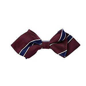 Little Gentleman Dress Up Boys Neck Tie for Formal Occasion