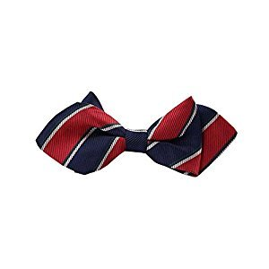 Solemn Color Kids Bow Tie Elegant Little Gentleman Clothing Accessory