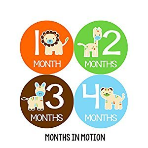 Months in Motion 047 Monthly Baby Stickers Baby Boy Months 1-12 Milestone Photo Sticker