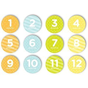 Tiny Ideas First Year Monthly Milestone Photo Sharing Baby Belly Stickers, 1-12 Months, Neutral