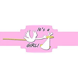 Cigar Bands Unlimited It's a GIRL! Self-Adhering Cigar Bands/Labels, Stork, 20 Pack