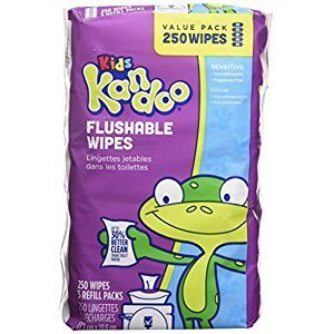 Kandoo Flushable Kids' Wipes, Sensitive, 250-Count