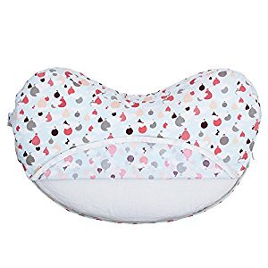 Bebe au Lait Basic Nursing Pillow Slipcover, Hot Air Balloons