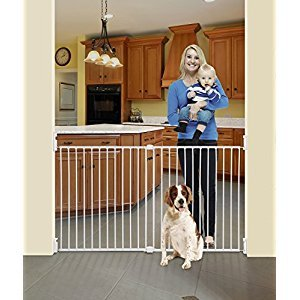 Dreambaby Broadway Xtra-Wide Gro-Gate, White (30-Inch-53-Inch) (Gate Height 30-Inch)