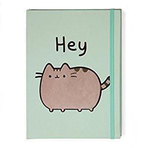 Gund Pusheen the Cat Hey Notebook Journal, Green