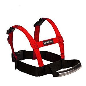 Lucky Bums Grip N Guide Kid's Ski Training Harness