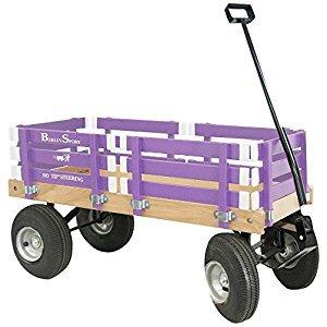 Berlin Amish-Made Sport Wagon Ride on, Purple