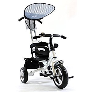 4in1 Lexx Trike Classic Smart Kid's Tricycle 3 Wheel Bike Removable Handle & Canopy NEW WHITE