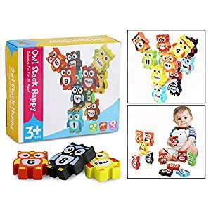 OFKPO 12 Pcs Wooden Owl Stacking Blocks Toy, Building Blocks Bricks Set for Kid Learning Numbers Words