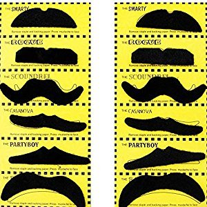 TRIXES 12 Self adhesive Assorted Fake Moustache Set Fancy Dress