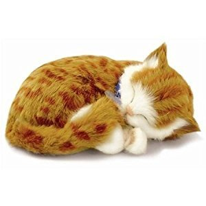Perfect Petzzz XP92-05 Huggable Orange Tabby Kitten