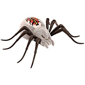 Wild Pets S1 Spider Single Pack Wolfgang