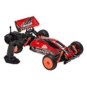 Virhuck 1/10 Scale 2WD RC Monster Truck, 2.4GHZ 1:10 Radio Remote Control RC Skirmish Buggy RC Racing Truck Car Monstertruck