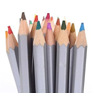 Liberty RE-24 24 Pack Watersoluble Water Soluble Ink Pencils - Set of 24 Colors