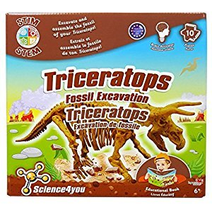 Science4You ID01607 Triceratops Fossil Excavation