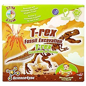 Science4You ID01608 T-Rex Fossil Excavation