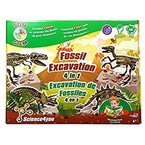 Science4You ID99860 Fossil Excavation 4 in 1