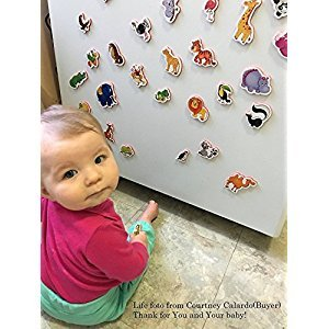 Fridge magnets for kids ZOO ANIMALS - 29 Foam animal toys for toddlers - Animal kids toys - Educational toddler toy