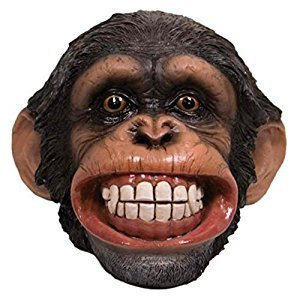 Money Coin Bank Smiling Chimpanzee