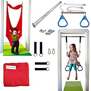 Indoor Swing by DreamGYM | Trapeze & Rings Combo Blue and Therapy Swing Red