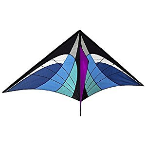 Lixada Large Delta Kite 160 x 90cm / 63 x 35.5in Outdoor Sport Single Line Flying Kite with Tail for Kids Adults