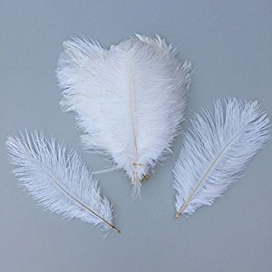 Sowder 6-8inch(15-20cm) Ostrich Feathers Plume for Wedding Centerpieces Home Decoration Pack of 20 (white)