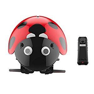 Virhuck DIY Ladybug Robot Kit, 2.4GHz RC Robotic DIY Building Set, Intelligent Educational Robot, Science Explorer Toys for Kids