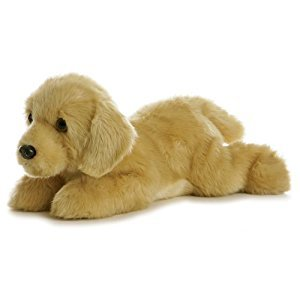 Goldie Golden Retriever Dog 12